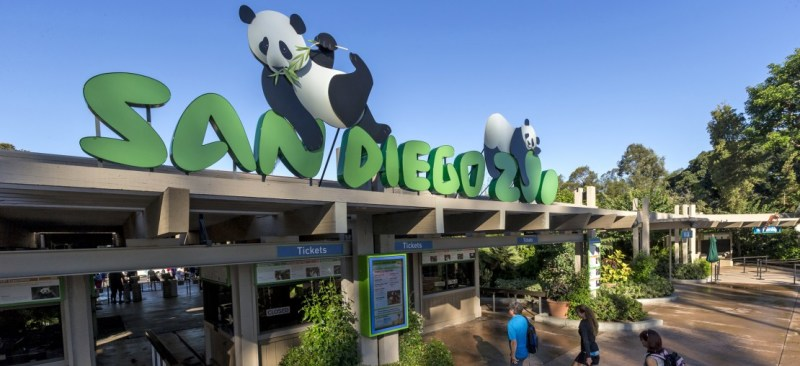 A Picture Of San Diego Zoo