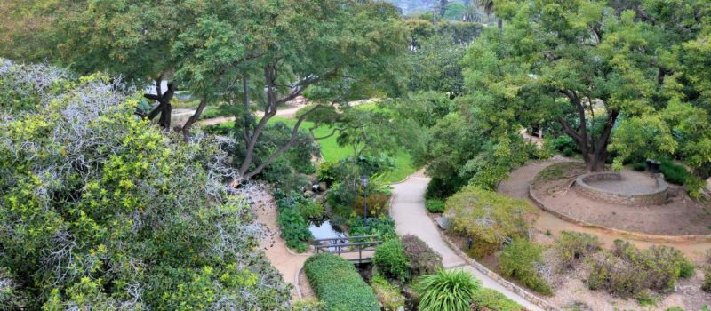 A Picture Of Santa Barbara Botanic Garden